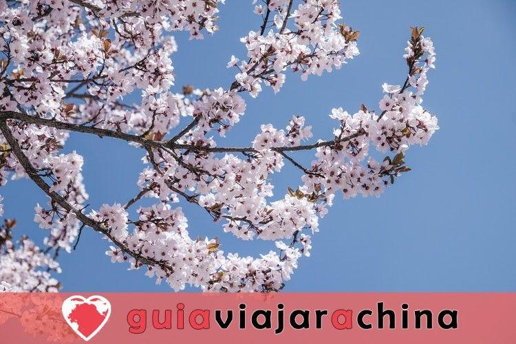 5 bonitos lugares en China para visitar este año 4