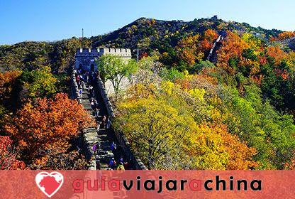 Guerreros y caballos de terracota - Museo de Sitio del Mausoleo del Emperador Qinshihuang 11