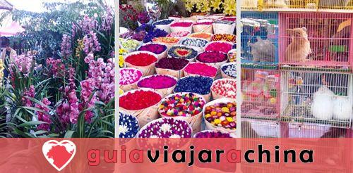 Mercado de Aves y Flores de Kunming - Epítome de la Vida en Kunming 2