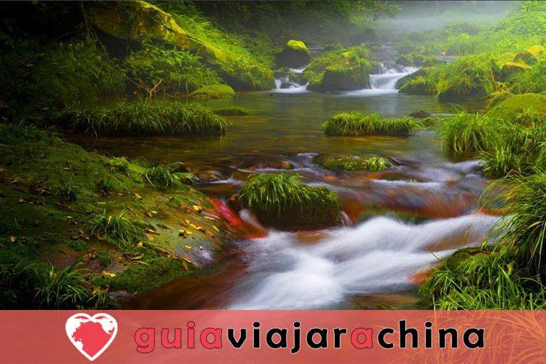 El arroyo Golden Whip - la ruta de senderismo más impresionante de Wulingyuan 2