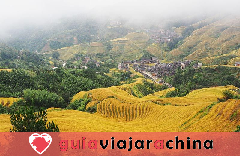 Las terrazas de arroz de Jinkeng - Sitio para las fotos más impresionantes de Longji 5