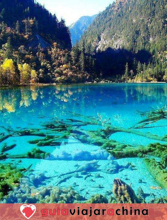 Valle del Jiuzhaigou - los más bellos paisajes acuáticos de China 7