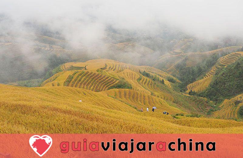 Las terrazas de arroz de Jinkeng - Sitio para las fotos más impresionantes de Longji 2