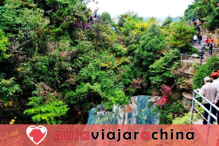 """Yuanjiajie - Busca el prototipo de """"Montañas del Aleluya del Avatar"""" 5"""