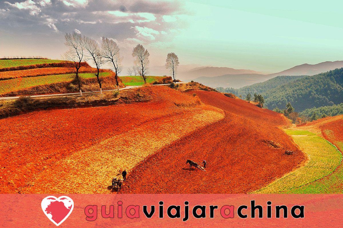 Tierra Roja de Dongchuan - Paleta Mágica de Dios 4