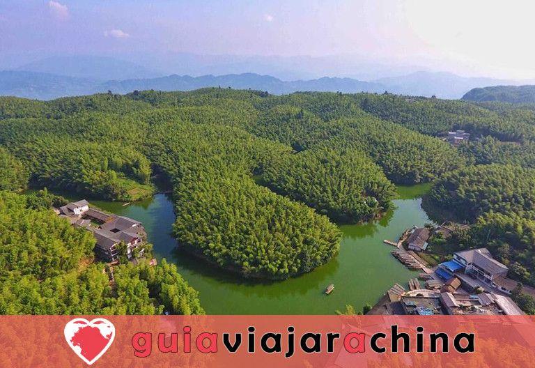 Bosque de bambú de Shunan - Barra de oxígeno natural 4