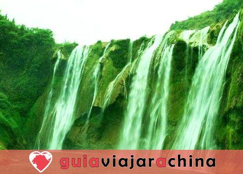 Bosque de bambú de Shunan - Barra de oxígeno natural 6