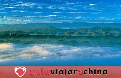 Bosque de bambú de Shunan - Barra de oxígeno natural 3