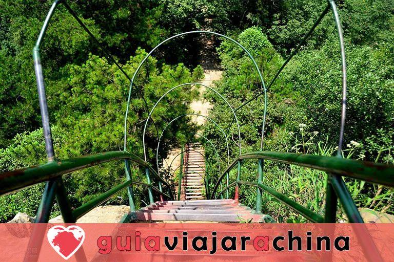 Yangjiajie - El paisaje más prístino del área escénica de Wulingyuan 4