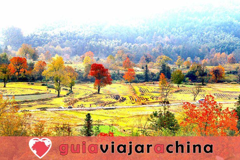 Pueblo Antiguo de Tachuan - El mejor escenario de otoño en China 4