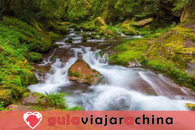 Huangshizhai (Pueblo de Huangshi) - El mirador más grande del Parque Forestal Nacional Zhangjiajie 10